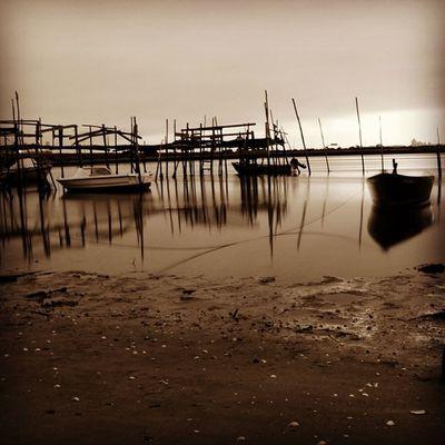 #boat #wharf #morning #dawn #sun #portugal #portugal_de_sonho #portugal_em_fotos #portugaloteuolhar #portugaldenorteasul #igers #igers_porto #igers_aveiro #aveiro #ilhavo #iphone5 #iphonesia #iphonegraphy #instagood #instagram #instalove #instamood #insta Igers Igers_aveiro Aveiro Ilhavo Sun Wharf Morning Instagramers Instagood Dawn Instadaily Canon Instalove Boat Iphonegraphy Igers_porto Portugal Portugaldenorteasul Photooftheday Portugaloteuolhar Iphonesia Eos650 Instagram Portugal_lovers IPhone5 Portugal_em_fotos Instamood Ig_portugal P3top Portugal_de_sonho