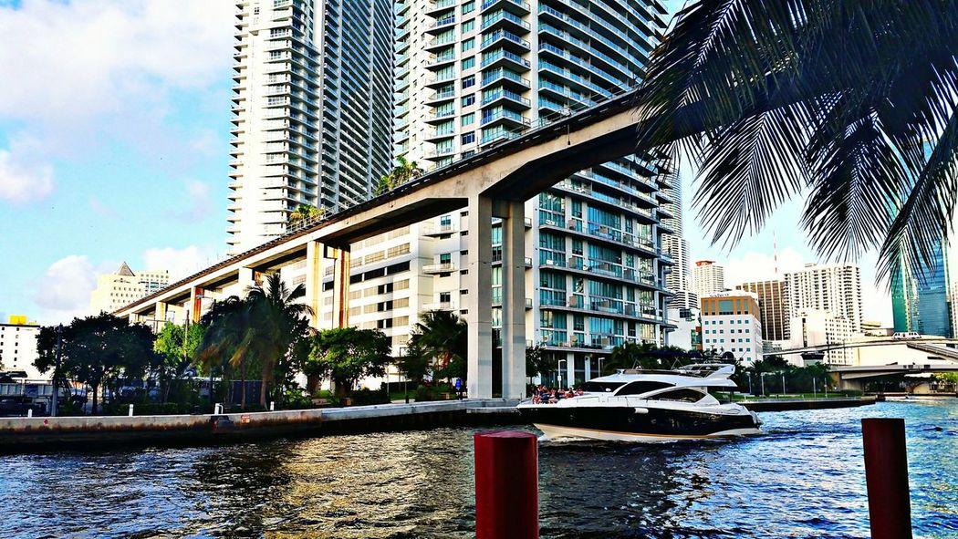 Miami City Life Cityscapes Downtown Real Estate Miami Real Estate Florida Condominium Condo City View  Citylife City Skyline City 2.0 - The Future Of The City City Landscape Cityexplorer City Park Miamiphotographer #miamiflorida #miamifashion #miaminights #miamiliving #miamistyle #miamibound #miamibeach #miamilife #brickell #wynwood #coralgables #sobe #igersmiami #ilovemiami #illgrammers #ig_masterpiece #incredible_shot Supremeshooters Photoofthe [a:7944381] Miamiphotographer Miami SkylineHidden Gems
