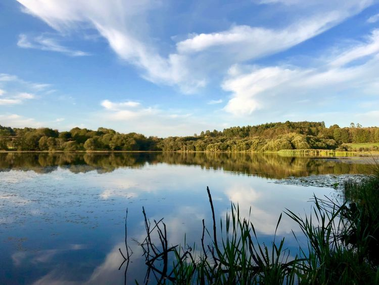 Reflection Lake Beauty In Nature Sobrado Galicia