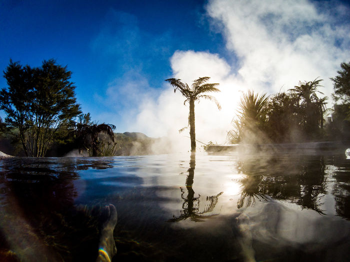 pool of a hot spring in the morning in new zealand Morning Palm Tree Travel Beauty In Nature Cloud - Sky Day Hot Spring Idyllic Nature New Zealand No People Non-urban Scene Outdoors Palm Tree Plant Pool Reflection Scenics - Nature Sky Tranquil Scene Tranquility Tree Tropical Climate Water Waterfront The Great Outdoors - 2018 EyeEm Awards