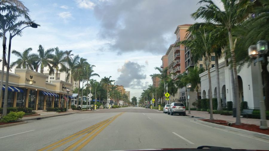Cars on road by palm trees against sky