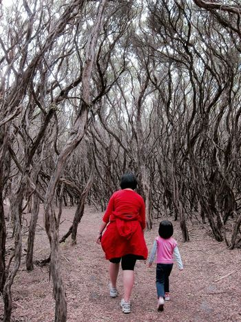 I will walk with you, through thick and thin. RePicture Motherhood Walking Nature Walk Hiking Getting Inspired EyeEm Best Shots Eye4photography  Protecting Where We Play