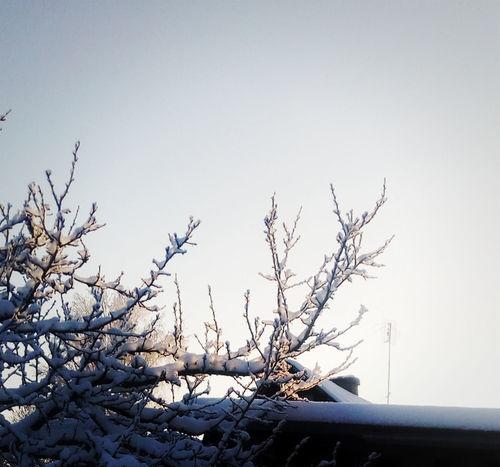 Cold Winter Evening Vilage Winter