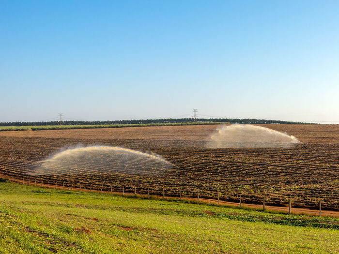Agriculture Economics Economy Field Irrigation Equipment Production Rural Sugar Ethanol Farming Field Hose Irrigation Irrigation System Landscape Nature No People Outdoors Plantation Saccharum Sugar Cane Sugarcane Tillage Water Wet