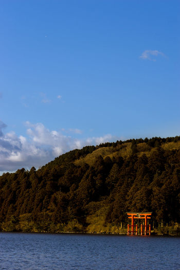 Shrine Hakone Shrine Lake Landscape Scenery Hill Worship Culture Religion Gate Travel Japan Asdgraphy Sony Sony A6000 Sonyimages Sonyphotography Sonyalpha Alphauniverse Trip ASIA Forest 85mm Sky No People Outdoors Lake Landscape Day Tree The Great Outdoors - 2018 EyeEm Awards