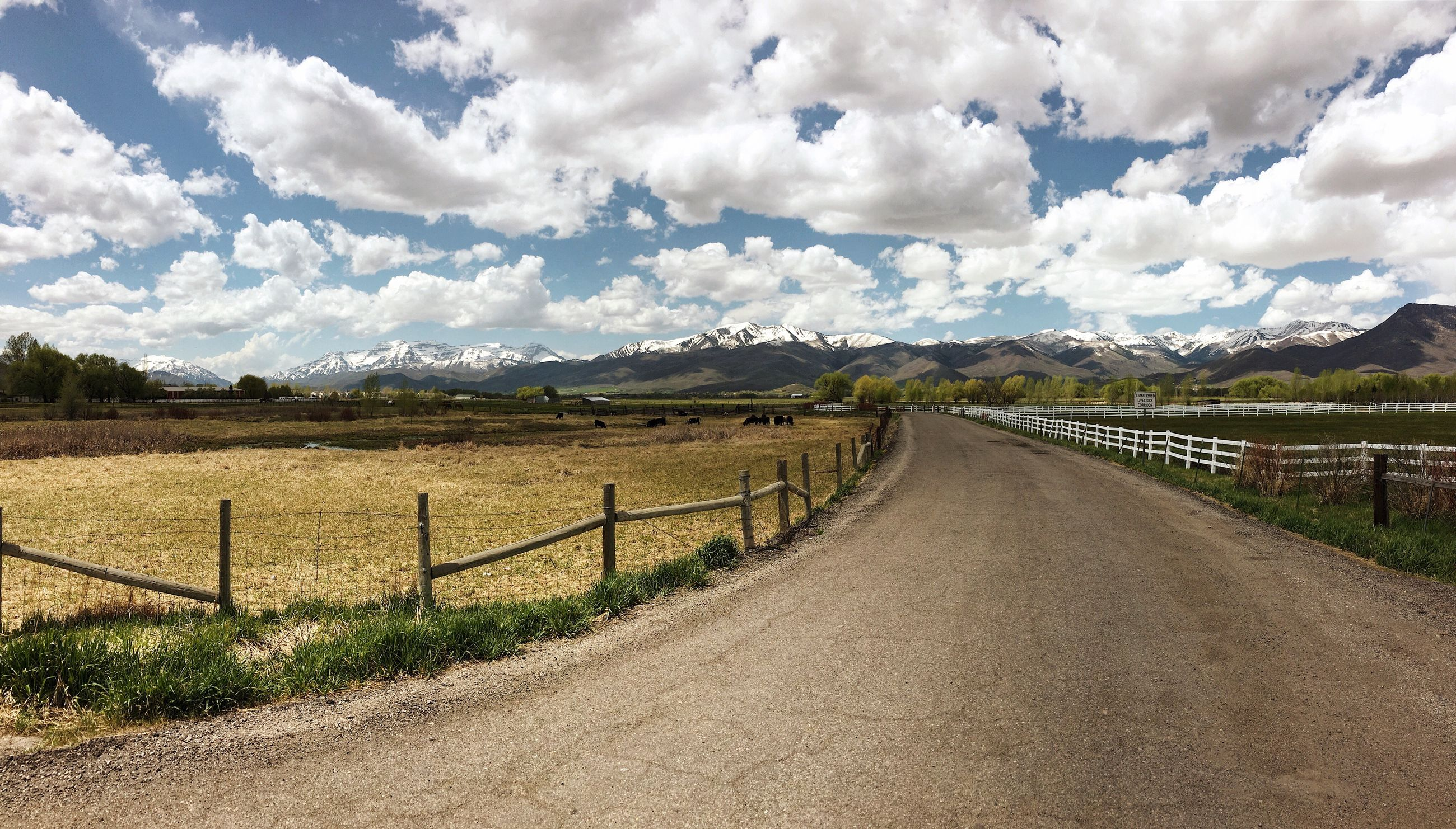 the way forward, road, landscape, cloud - sky, scenics, tranquil scene, day, mountain, tranquility, no people, nature, sky, beauty in nature, rural scene, outdoors, tree