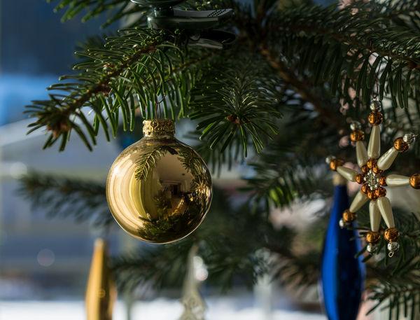 X-MAS Austria ❤ Hello World Love Time Sony Ggaßler Tirol  Hanging Tree Christmas Tree Christmas Decoration Decoration Christmas Celebration Close-up