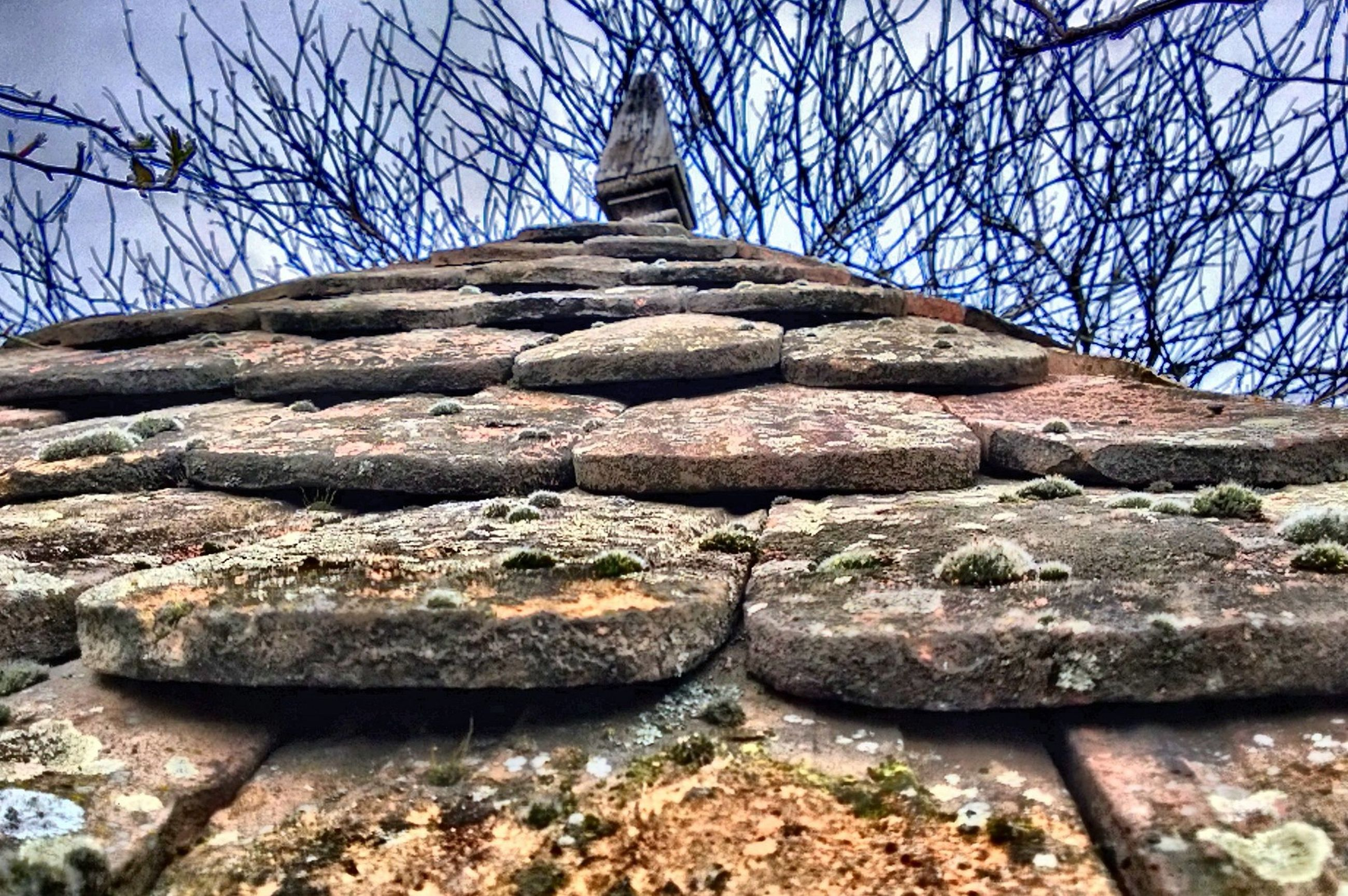 bare tree, built structure, stone material, stone wall, low angle view, architecture, tree, stone - object, sky, clear sky, sunlight, history, rock - object, day, building exterior, outdoors, stone, steps, no people, travel destinations