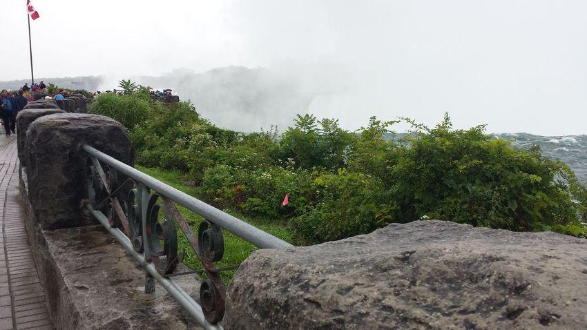 Adventure Bush Canada Flag Cloudy Day Mist Nature Non-urban Scene Outdoors Scenics Stone Wall Tranquil Scene Tranquility