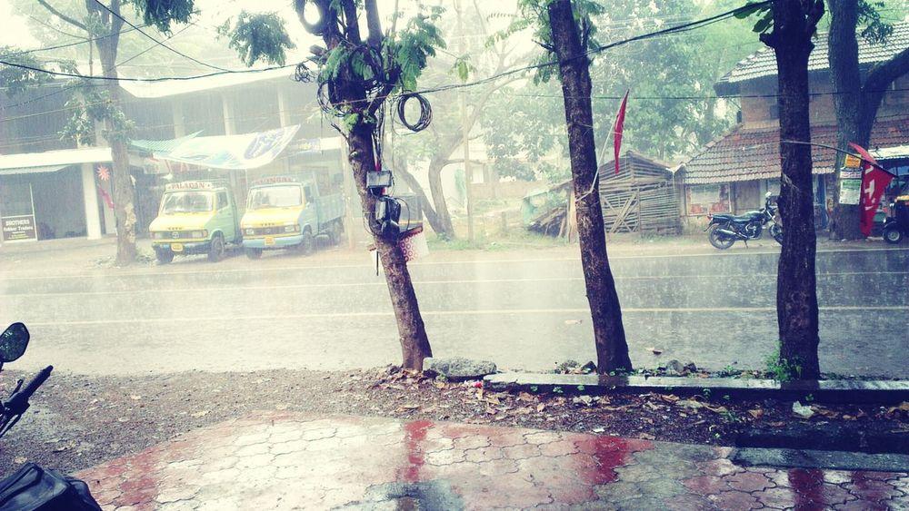 Rainy DayRainy