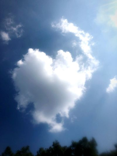 Wolke Herzwolke Herz Heart Cloud - Sky Wolke Cloud - Sky Sky Low Angle View Tree Beauty In Nature Nature Tranquility No People Outdoors Cloudscape Sunlight Blue