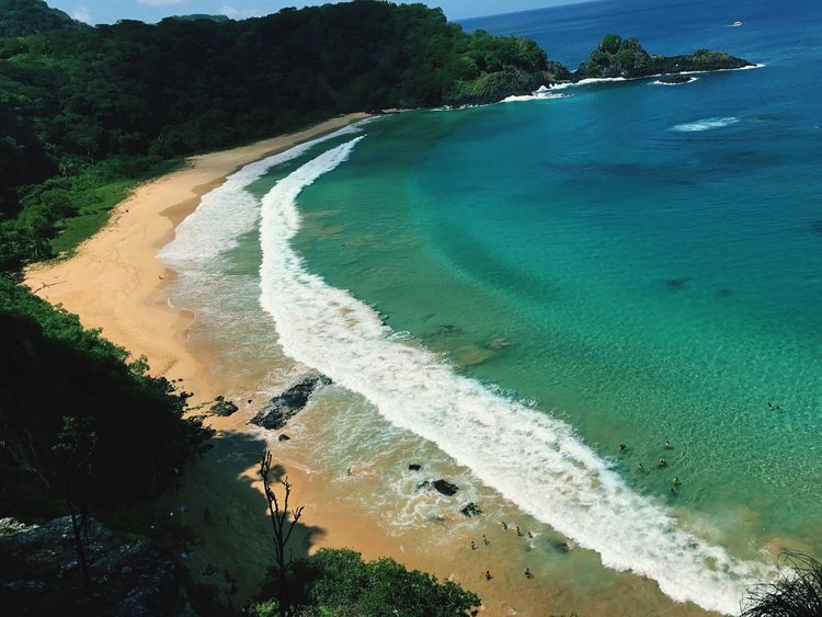 Sancho Sancho Noronha Water Beach Sea Sand Nature Beauty In Nature Scenics