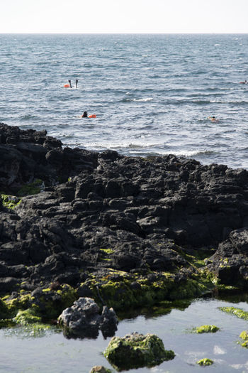 haenyeo picking up seafood by diving in Jeju Island, South Korea Beach Beauty In Nature Day Diving Gujwaup Haenyeo Horizon Over Water Nature One Person Outdoors People Real People Sea Sea Life Sky Sport Water Wave Work