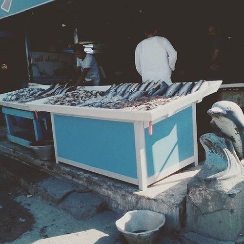 من البحر للشوي للمعدة ع طووول سفر العيد ٢٠١٥ أكلة سمك سنجاري و كابوريا