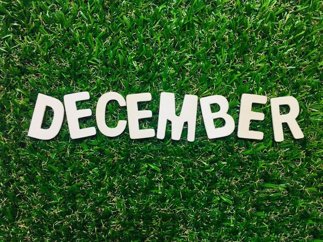 Calendar Card Background Space Last Of The Year Month December Grass Text Green Color Communication Field High Angle View Day No People Sport Outdoors Nature Soccer Growth Competition Close-up