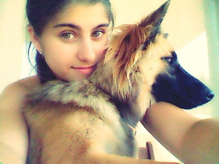 My princess Team Noah!! Dogs Beautiful Animal Love