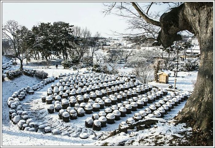 The jars covered with snow, Korea