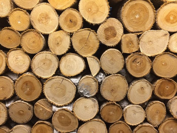 Log Stack Timber Woodpile Abundance Full Frame Lumber Industry Deforestation Forestry Industry Fossil Fuel Wood - Material Cross Section Shape Environmental Issues Large Group Of Objects Backgrounds No People Day