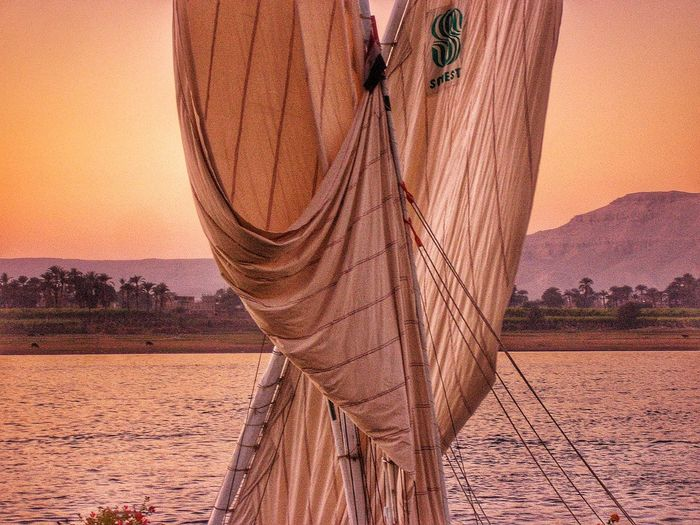 Felucca Sails Sails Up Luxor Nile River Nile River Nile Egypt Sunset Sunset_collection Sunset Silhouettes Sunsets Orange Sunset Pink Sunset River View Landscape_Collection Landscapes With WhiteWall Landscape_photography Landscape Landscapes Nature Abstract Abstractart