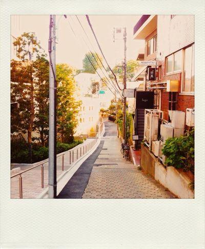 EyeEm Best Shots EyeEm Best Edits Polamatic Japan