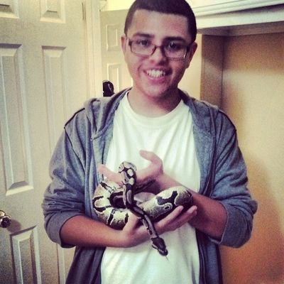 I WANT ONE !!! :D Snake Chillin Toofresh