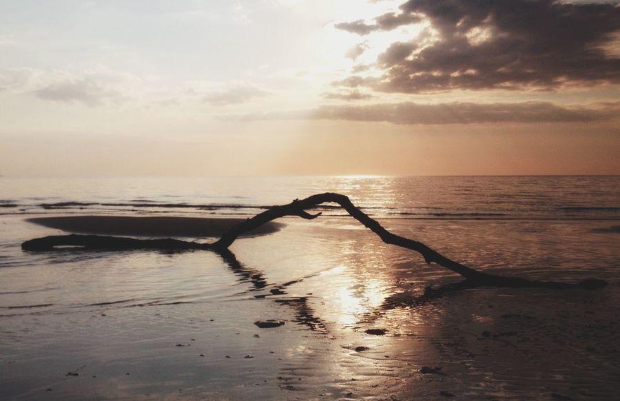 Sunset EyeEm Best Shots Sea EyeEm Nature Lover