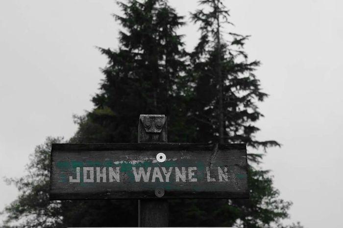 John Wayne John Wayne Lane Westport, WA Green Sign Trees Close-up Pole Outdoors
