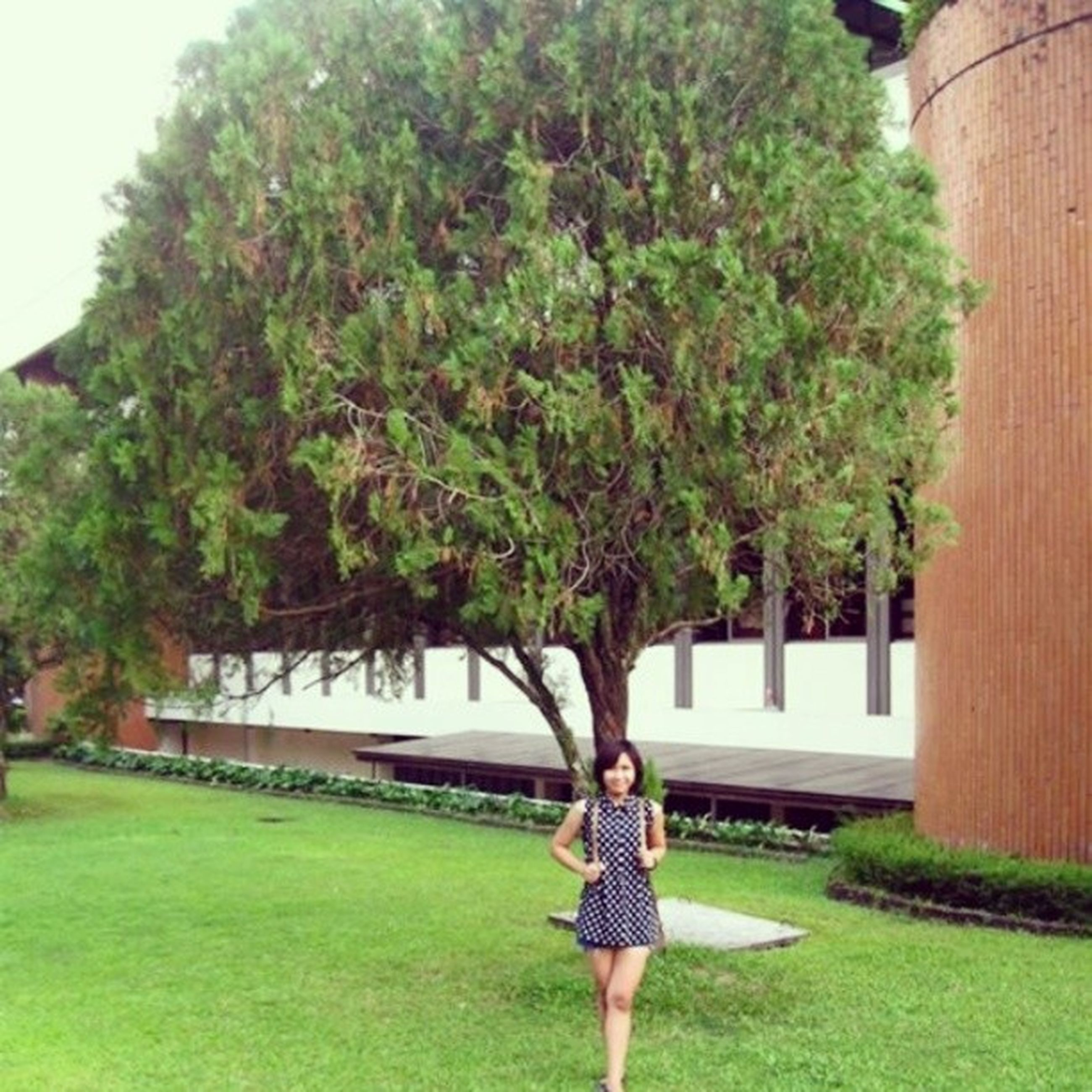 tree, lifestyles, casual clothing, full length, grass, leisure activity, young adult, person, standing, young women, green color, park - man made space, three quarter length, rear view, building exterior, front view, growth, architecture