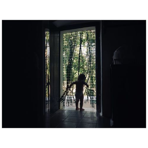 Rear view of silhouette man standing by window in building