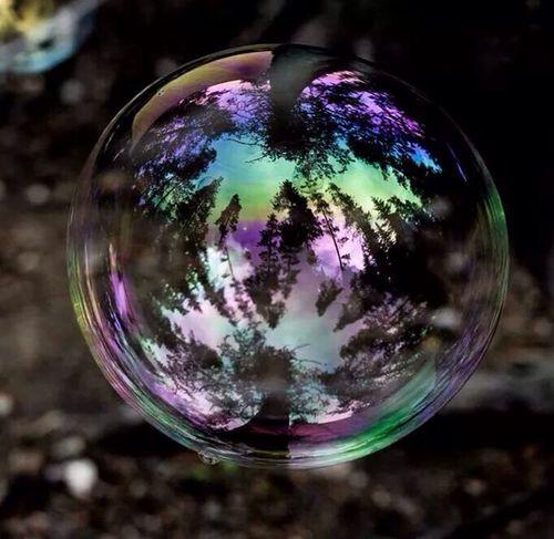Bubble Nature Creative Photography