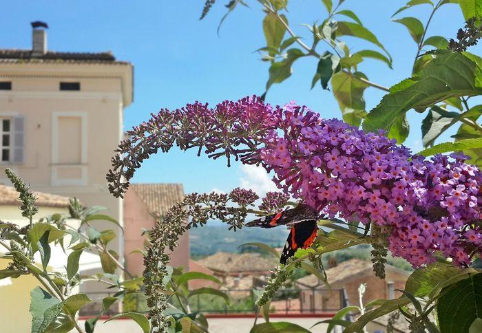 Abruzzo - Italy Italianeography EeYem Best Shots Eeyem Photography Travelphotography Italy❤️ Beautiful Nature Mytravelgram My World OpenEdit