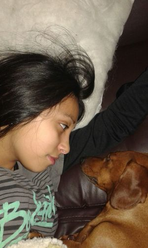 Waking up whit my sausage, juju n.n Relaxing Pets Petlover Hi! Hello World Dog Mydog♡