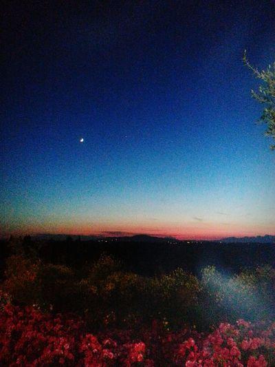 Tramonto Moon&sun  Moon&sun&angel Getting Inspired
