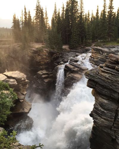 Athabasca Falls, Jasper, Alberta, Canada Nature Falls Hiking Waterfall Canada Rocky Mountains