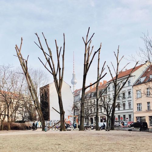 Bare trees by street against buildings in city