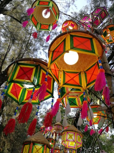 Low angle view of illuminated lanterns hanging on tree