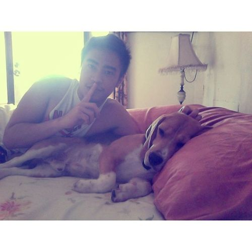 """Aba, tanghali na nga ako nagising nauna pa ako bumangon. Nakakahiya naman!"" Beagle Beagles  Dog Puppies dailypuppy instabeagle beaglelovers beaglemania pet instapet tagsforlikes likesforlikes manila philippines"