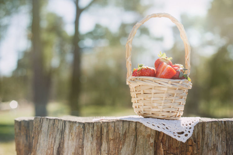 Close-Up Of Strawberries In Basket On Tree Stump