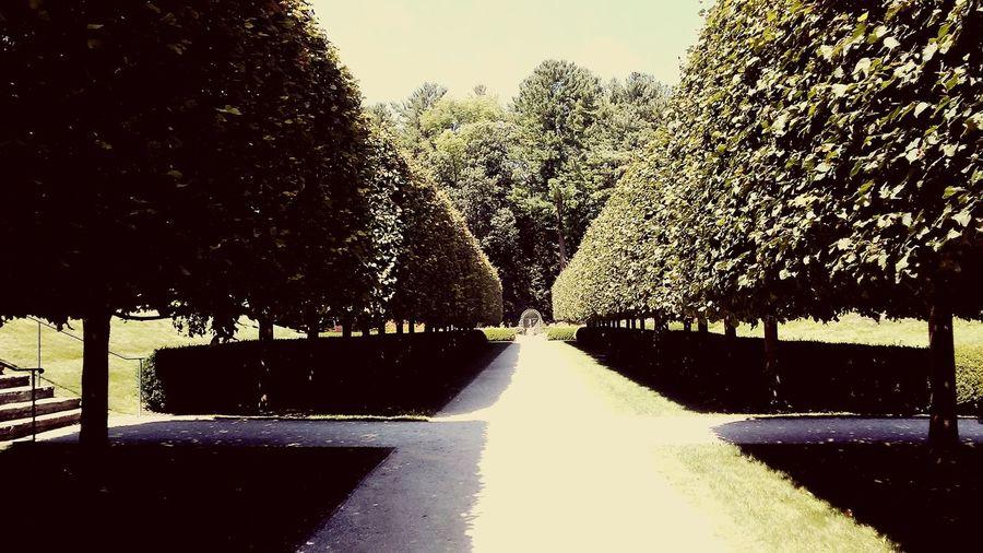 The Mount Edith Wharton Berkshires Massachusetts Pathway Trees