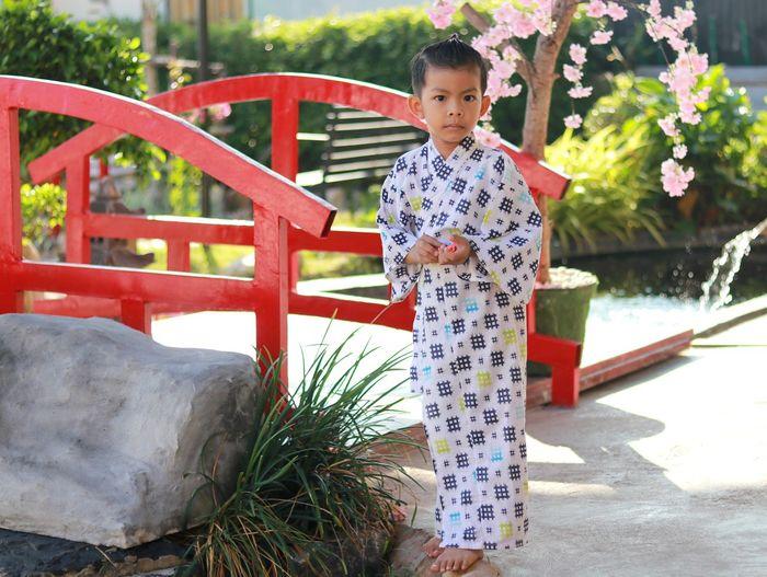 Asian boy wearing uniform japan background bamboo fence mountain view  light sunlight nature evening