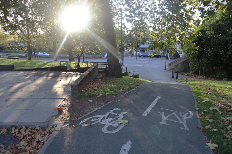 Bike lane in