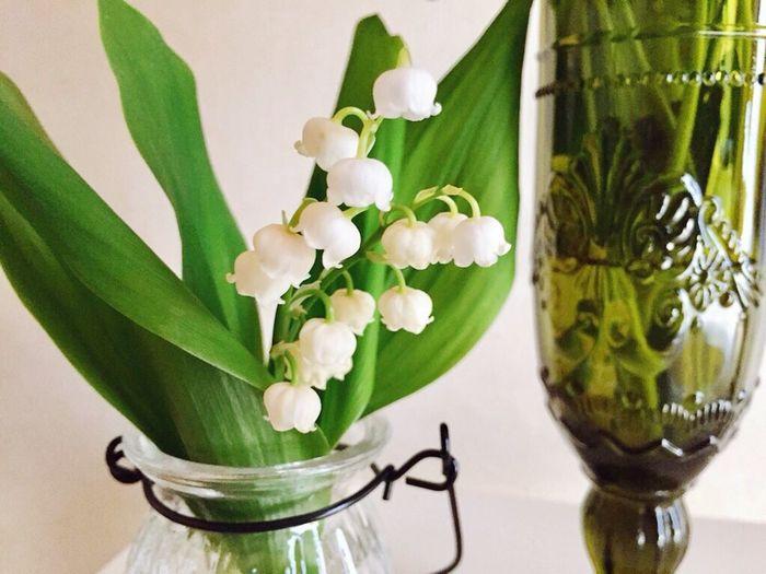 すずらん Bell Flower Bell Flowers White Flower White Flowers 鈴蘭 すずらん