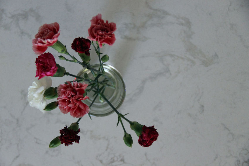 Beauty Beauty In Nature Bouquet Bunch Of Flowers Carnation Decoration Flower Flower Arrangement Flower Head Focus On Foreground Fragility Freshness Indoors  Marble Nature Petal Red Rose - Flower Simple Photography Vacations Vase