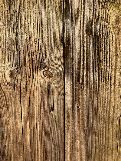 Wooden fence in