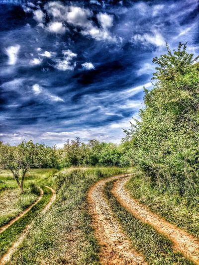 Hdr_Collection Farmland