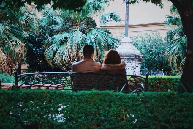 Pareja / Couple Parejas♡ Two People Rear View Togetherness Tree Palm Tree Outdoors Love Nature Women Friendship Lifestyles Sitting Day Relaxation EyeEmNewHere EyeEmNewHere Adventures In The City