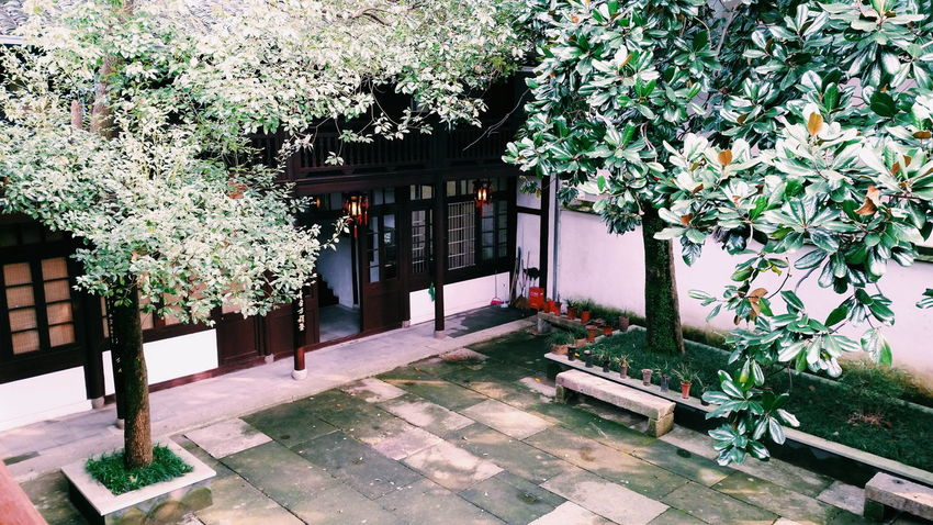 Museum Yard Peaceful Old House