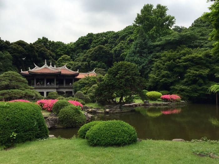 Shinjuki Garden