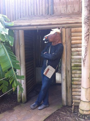 Animal Head  Animal Themes Architecture Building Exterior Built Structure Chilling Day Domestic Animals Full Length Fun Home Interior Horse House Man One Animal One Person Outdoors Pets Relaxation Rural Scene Sitting Standing Sunlight Window Wood - Material