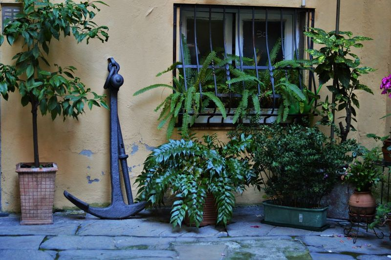 Metal by potted plants outside house